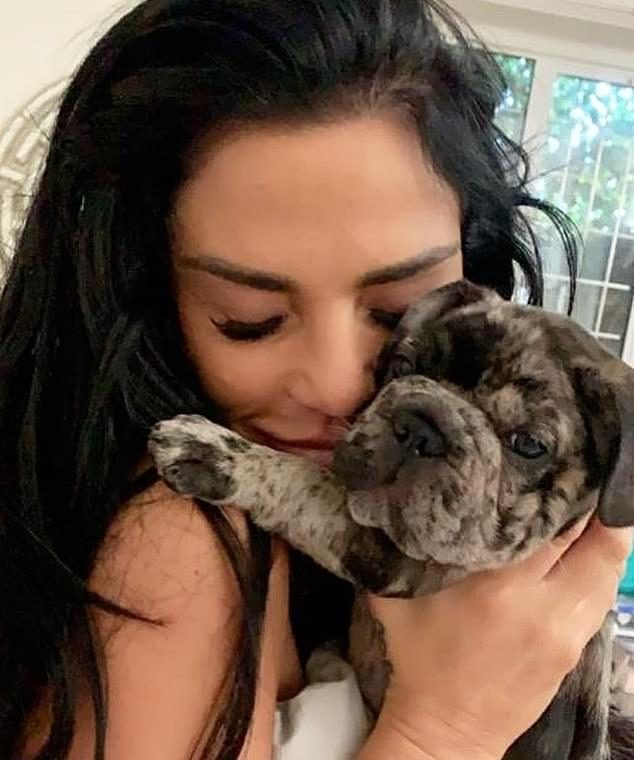 Horror: Katie Price reveals her trauma after illegally advising her to give her puppy hemp oil Rollo before she chokes to death in an armchair
