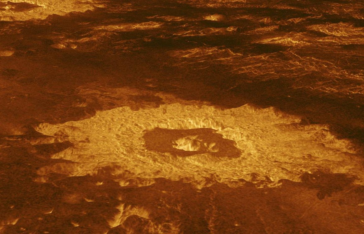 This is what life on Venus might look like - and how we will find it