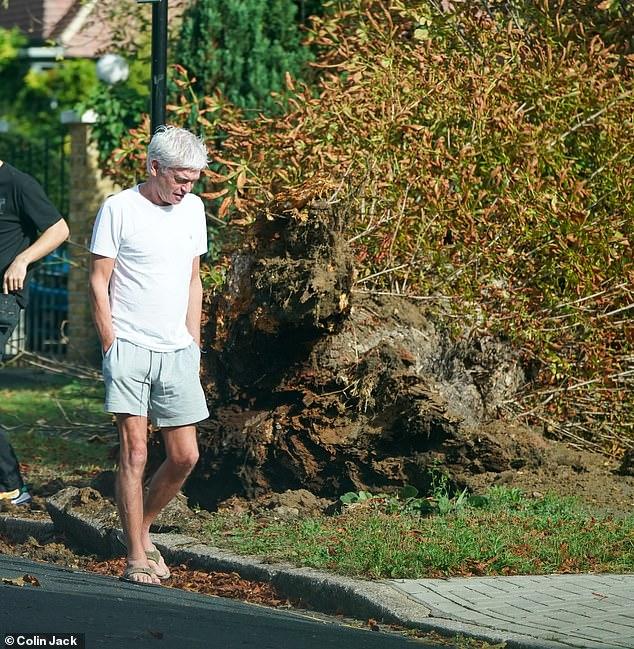 Tree slip: The inhabitants were rubbing their shoulders