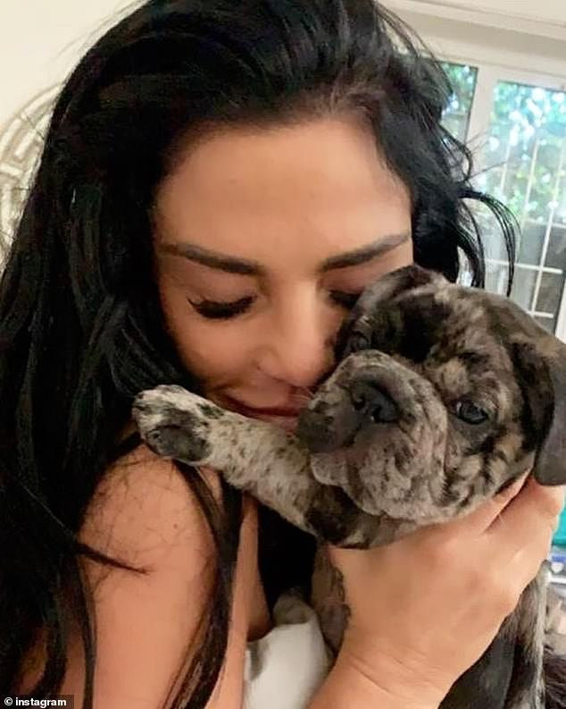 Horror: Katie Price revealed her trauma after illegally advising her to give her puppy hemp oil Rollo before she choked to death in an armchair