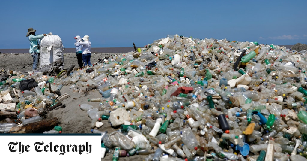 The super enzyme that eats plastic may be the key to beating pollution