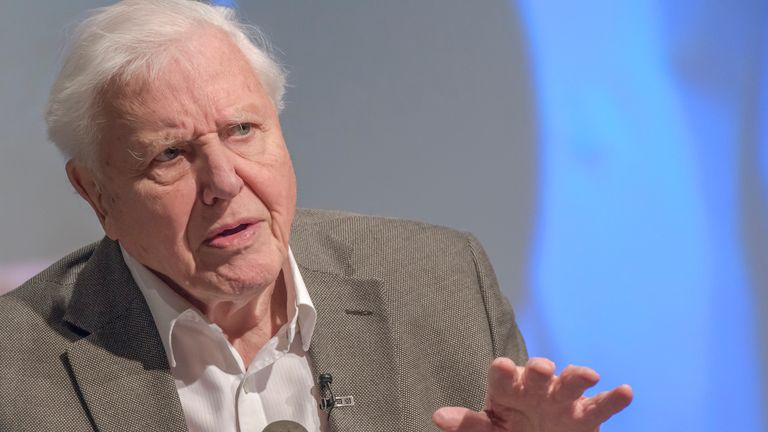 Sir David Attenborough speaks at the UK Climate Association in January 2020