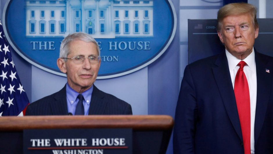 """Coronavirus: Leading American virus expert Dr. Anthony Fauci says the White House has hosted a """"super-spread event"""" 