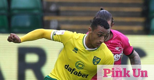 Norwich City: Adam Idah was excluded from the Republic of Ireland Championship in the European Championship 2020 due to the Coronavirus crisis  Pink On
