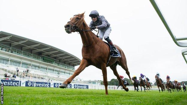 The Serpentine was the unbridled winner of the Epsom Derby in July