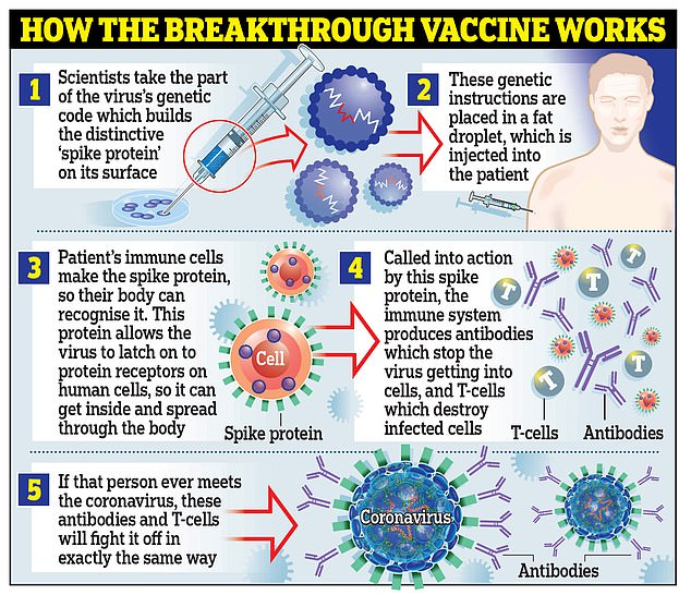 The Moderna vaccine works in the same way as the one developed by Pfizer and BioNTech, using a genetic material called RNA from the Corona virus to trick the body into making the `` spike '' proteins that the virus uses to attach to cells inside the body.