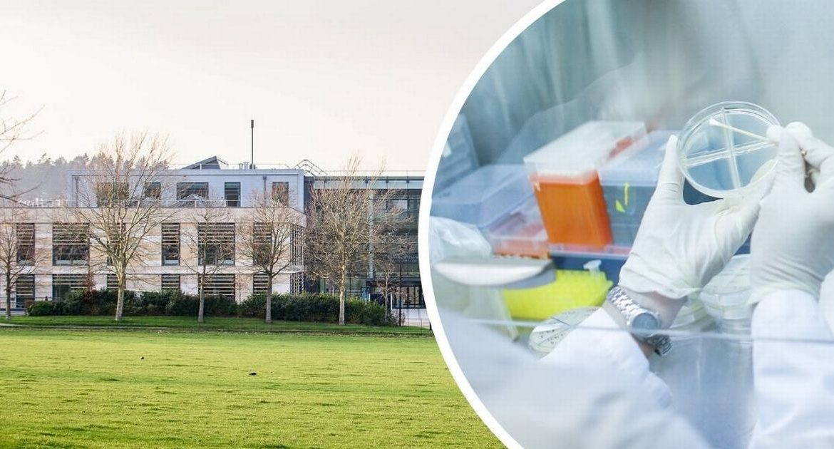 Another 89 cases of coronavirus infection have been confirmed at the Universities of Bath