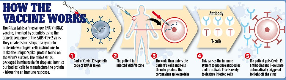 A diagram showing how the Pfizer vaccine works, by entering a patient's cells, causing the immune system to produce antibodies and activate T cells ready to destroy those with coronavirus.