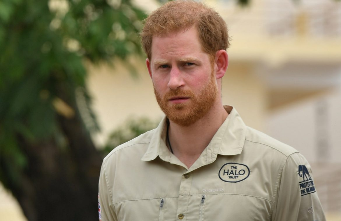 <p>Prince Harry in Angola</p>