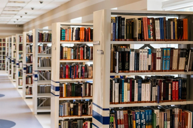 a.  J. Dobosz: The double closure of libraries was an overwhelming experience for human beings