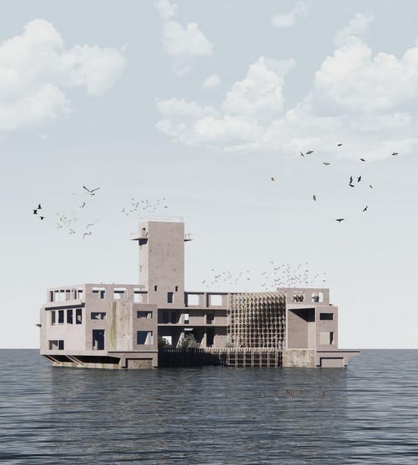 Habitat of birds in the torpedo house Gdynia