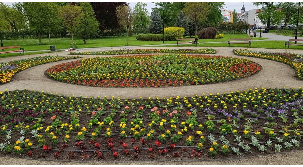 Wejherowo welcomes spring flowers »Portal and Telewizja Kaszuby24