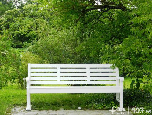 The Green Bench Competition Scholarship.  The money is waiting!
