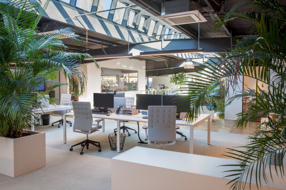 Turn the warehouse into a work space filled with light