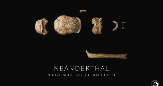 The remains of nine Neanderthals have been found in Italy