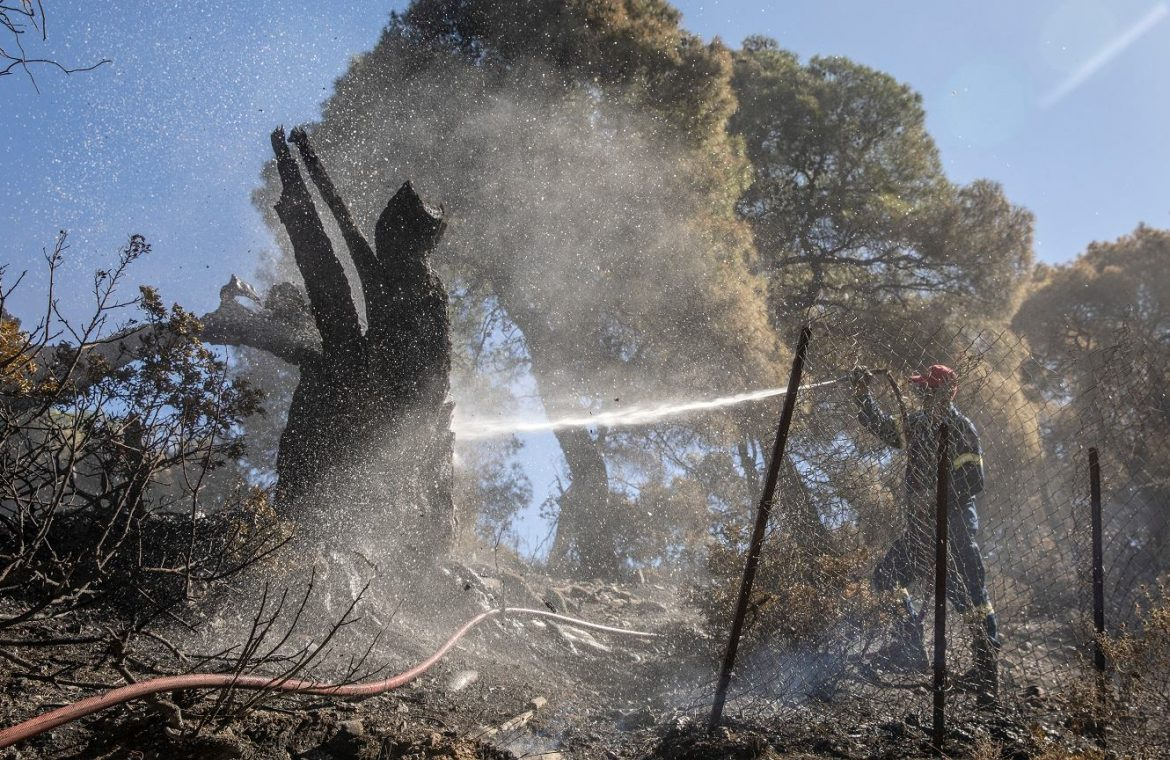 Greece.  Hundreds of firefighters, 16 planes and an army.  Forest fires threaten an environmental disaster |  world News