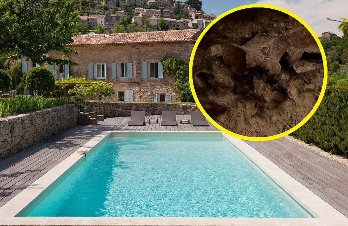 A couple wanted a swimming pool.  What they found chilling on Earth - O2