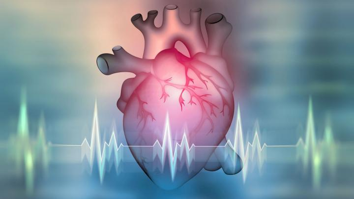 The hearts of 10 CCS patients controlled by artificial intelligence