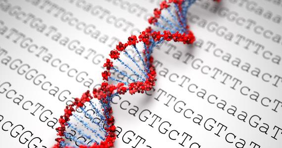 A major breakthrough in our DNA