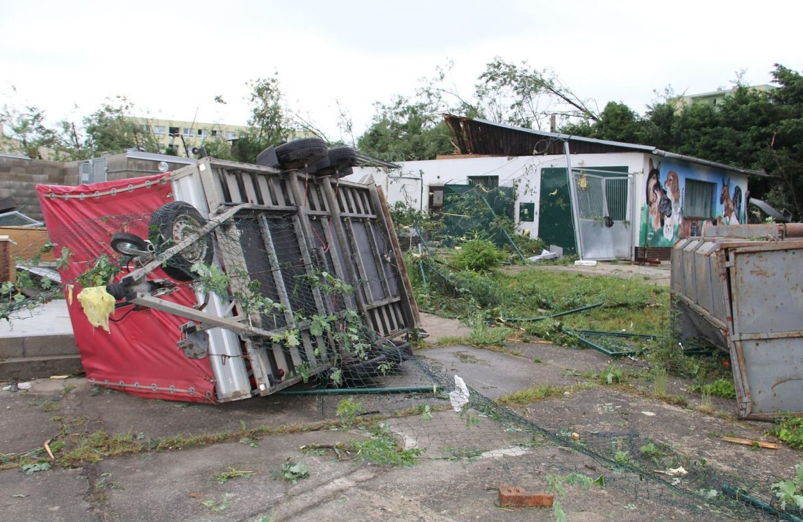 A hurricane hit the Czech Republic zoo.  A shelter almost razed to the ground