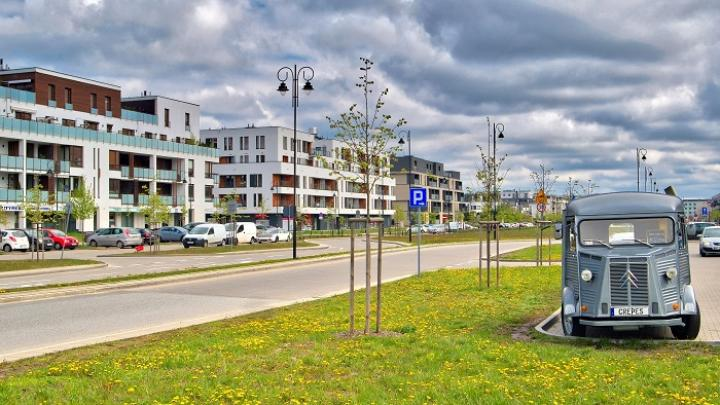 Scientists from Nicolas Copernicus University: Cities need more green spaces to protect them from heat and drought