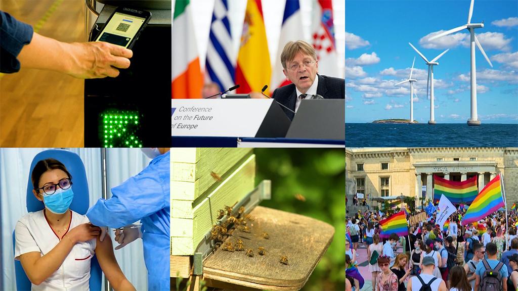 H1 2021: COVID-19, Europe's future, climate law |  News