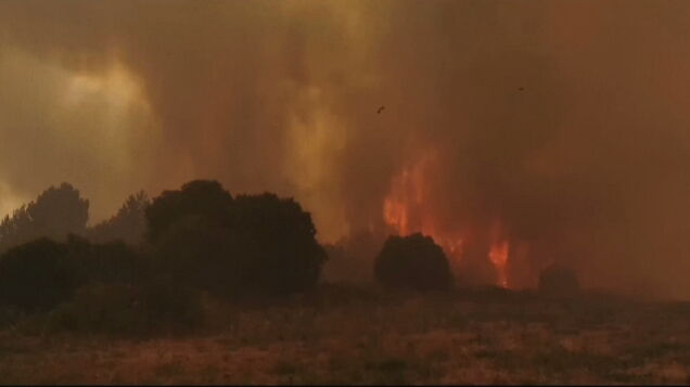 Sardinia is on fire, 1,500 people fled their homes.  France announced its aid