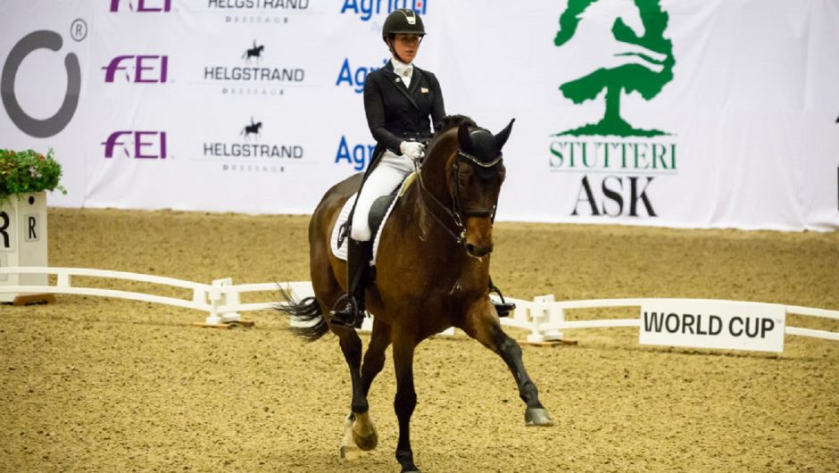 Tokyo 2020. Equestrian.  The qualifiers are over.  We know the participants in the Grand Prix