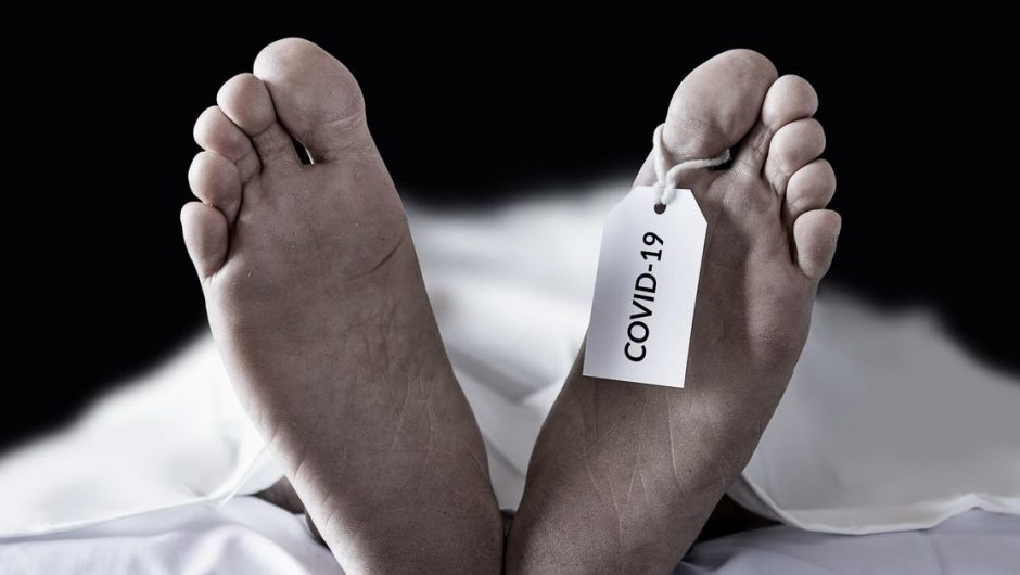 Tragic US balance sheet: 1 in 500 Americans died of COVID-19